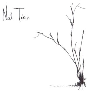 Wood N' Steel by Ned Tobin - cover